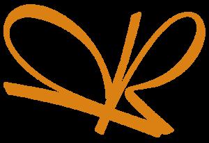Logo Robert Plaschke